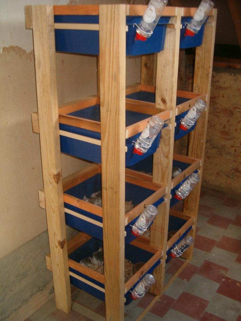 Racks élevage Mastomys Hpim8113