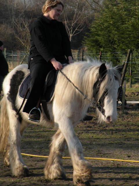 Une photo de vous et votre cheval - Page 3 Kylian14