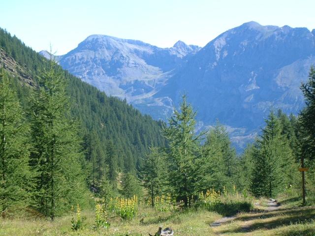 Les Hautes-Alpes Dscf8817
