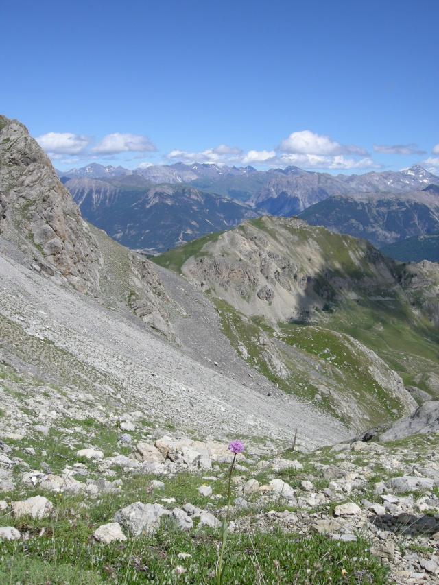 Les Hautes-Alpes Dscn1725