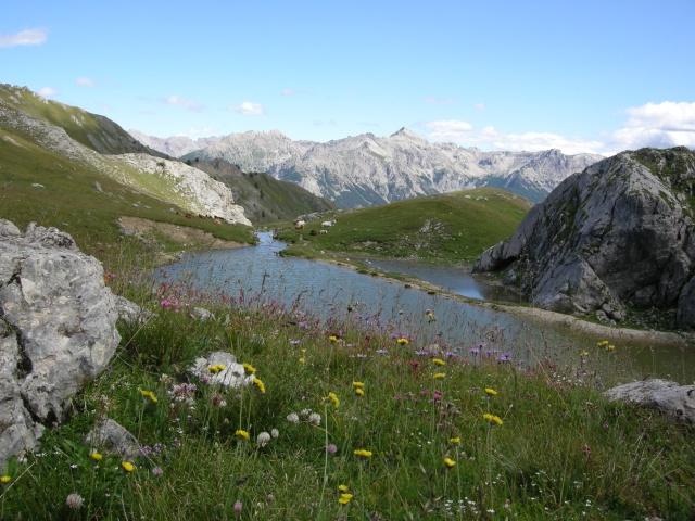 Les Hautes-Alpes Dscn1730