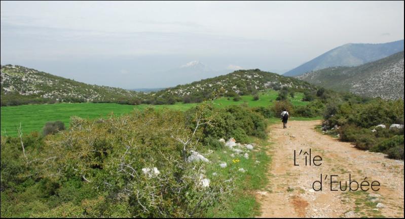 [Grèce] Péloponnèse, Eubée et Mont hymittos Jlr_8510