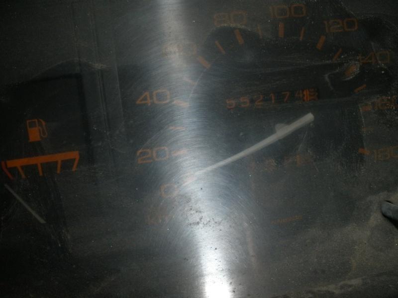 KING CAB D21 + TERRANO I D21 P8260118