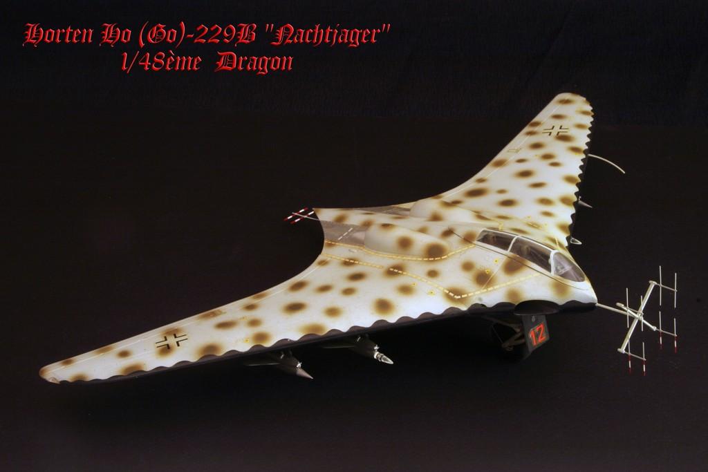 """Horten Ho229 B """"Nachtjager"""" (Ho IX)  [1:48 - DRAGON] Go229b10"""