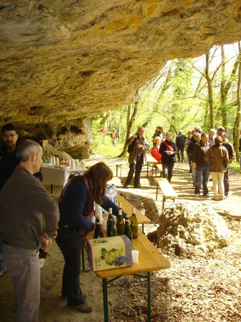 La grotte d'Arcy-sur-Cure Arcy-s10