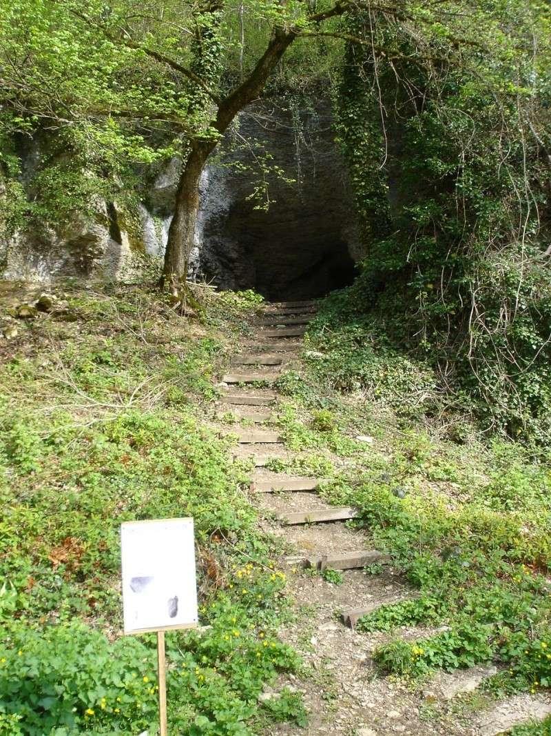 La grotte d'Arcy-sur-Cure Arcy-s11