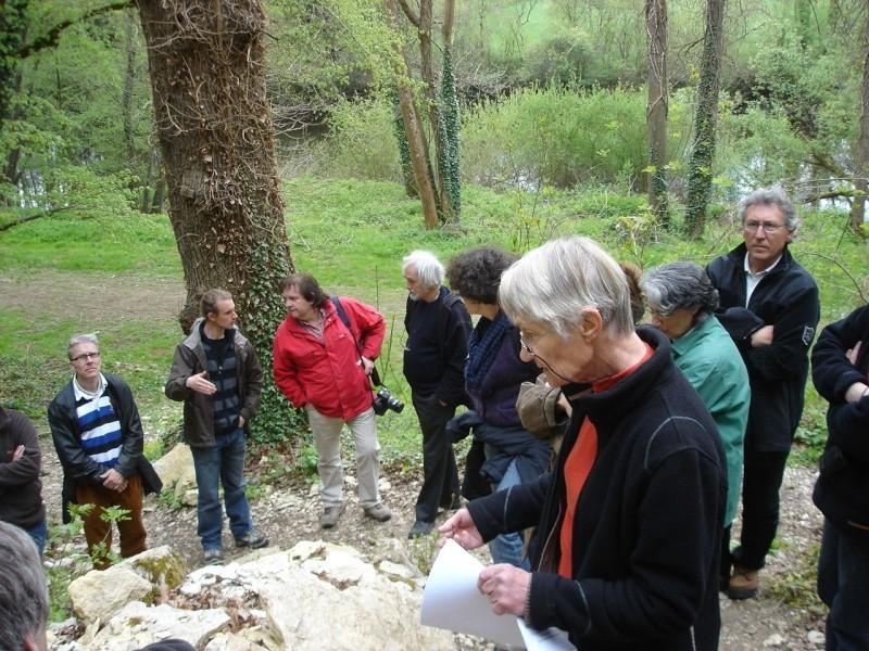 La grotte d'Arcy-sur-Cure Arcy-s12