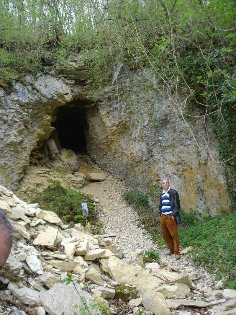La grotte d'Arcy-sur-Cure Arcy-s13