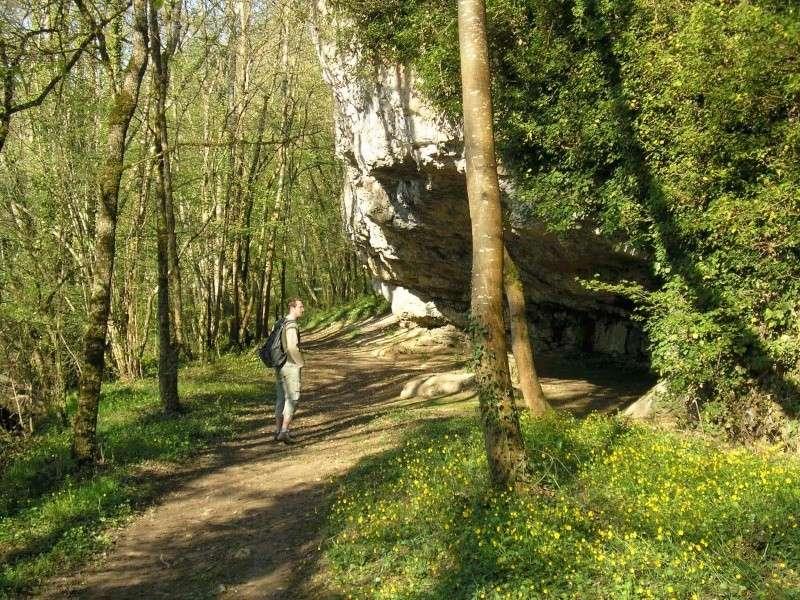 La grotte d'Arcy-sur-Cure Arcy110