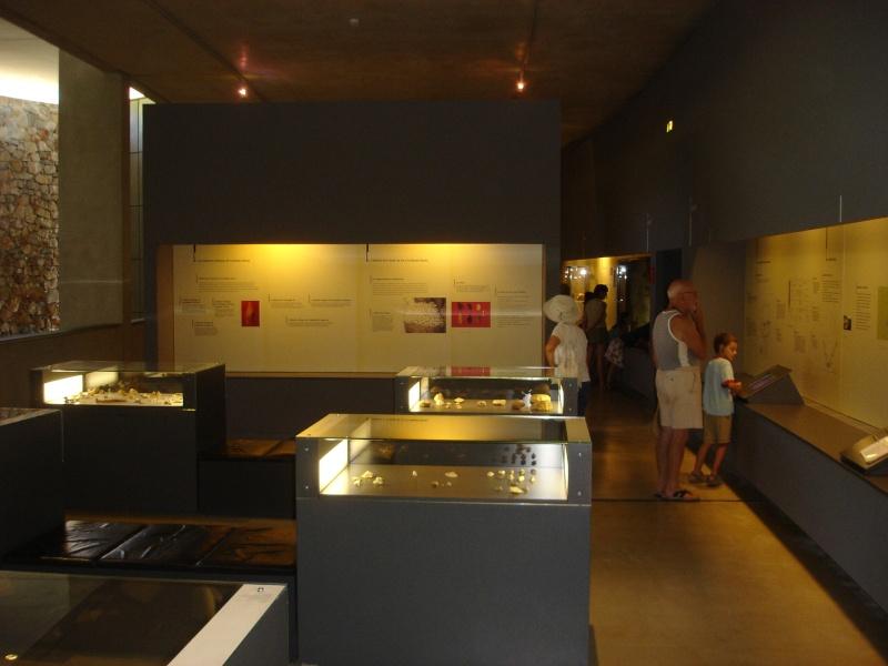 Musée de Préhistoire de Quinson Champi16