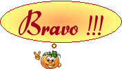 FLAN BRESILIEN AU LAIT CONCENTREE Bravo-10