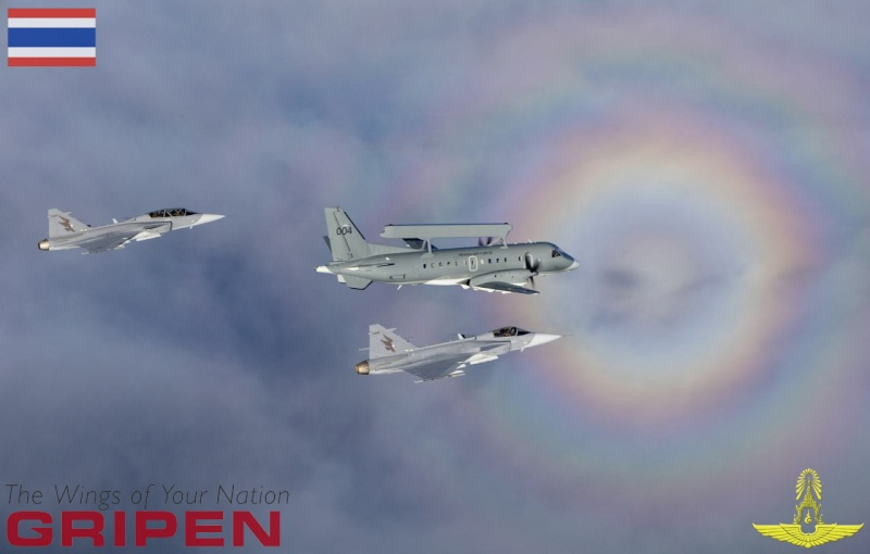Gripen around the world - Page 4 2ijhyb10