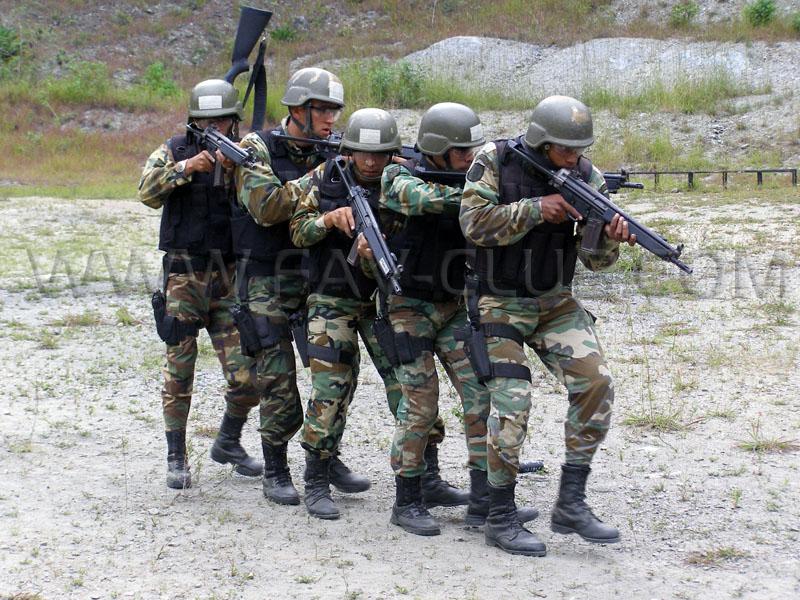 Armée Venezuelienne/National Bolivarian Armed Forces/ Fuerza Armada Nacional Bolivariana Gacvia13