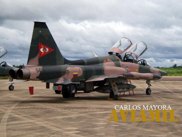 Armée Venezuelienne/National Bolivarian Armed Forces/ Fuerza Armada Nacional Bolivariana N1668010