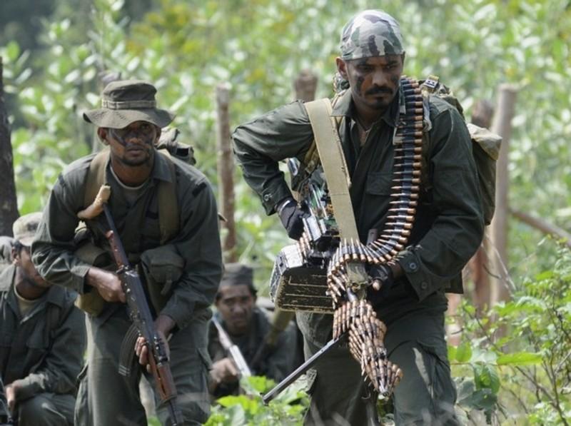 armée Sri-lankaise / Sri Lanka Armed Forces - Page 2 Sla1810