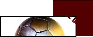 Fifa Manager Cup Membre10