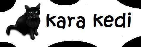 Kara Kedi Artık Tam Yanıbaşınızda! I_logo11