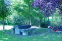 Parcours pour aller à Allègre 2009 - Page 2 D43-110