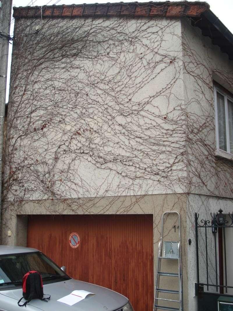 ma maison est une eponge Dsc01810