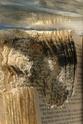 [Art] Livres objets-Livres d'artistes - Page 2 Couv-266