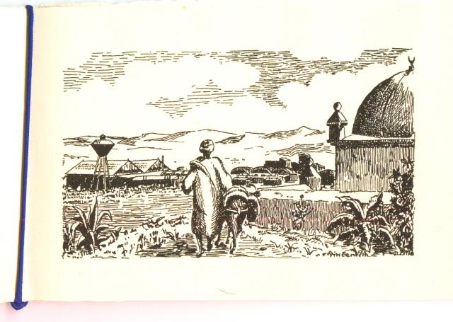 [Campagnes] Mers el-Kébir - Page 11 Ac_00212
