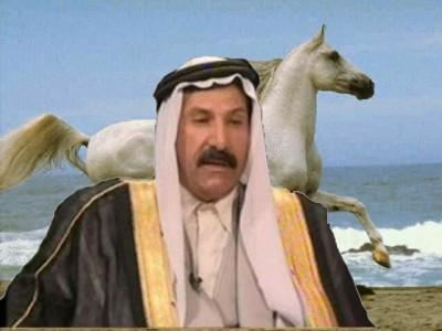 الشيخ جمعة الدوار شيخ عشائر البقارة Jumaa10