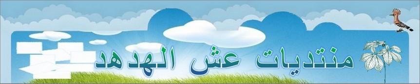 منتديات عش الهدهد