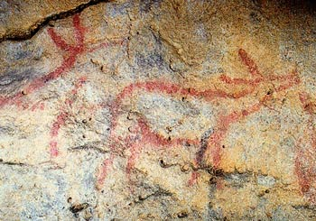 La cueva de Covalanas Covala12