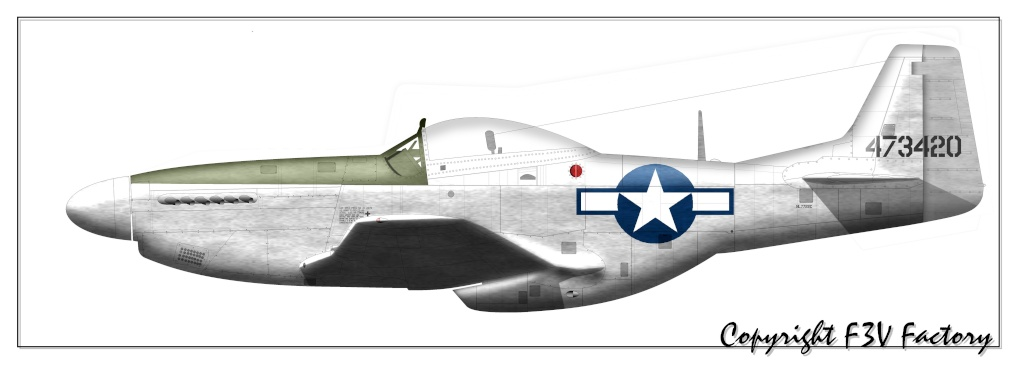 P-51 Mustang by F3V - Page 2 P-51d-11