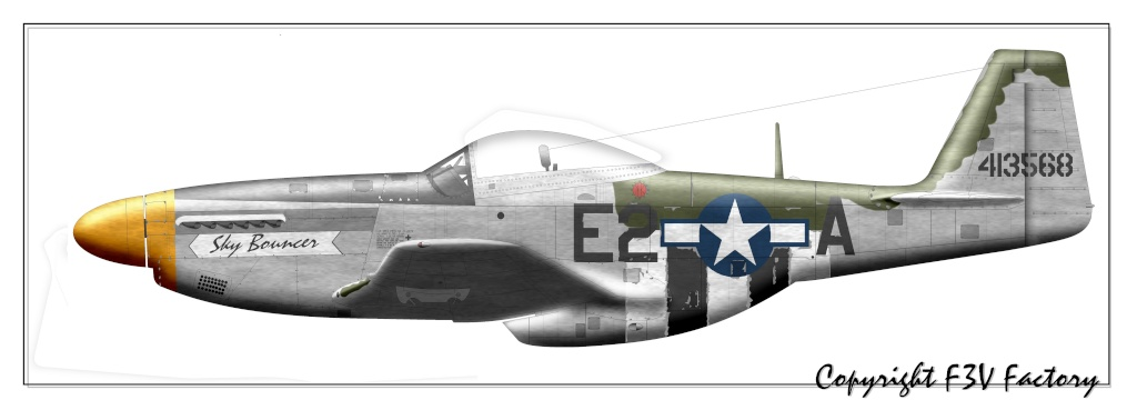 P-51 Mustang by F3V - Page 2 P-51d-14