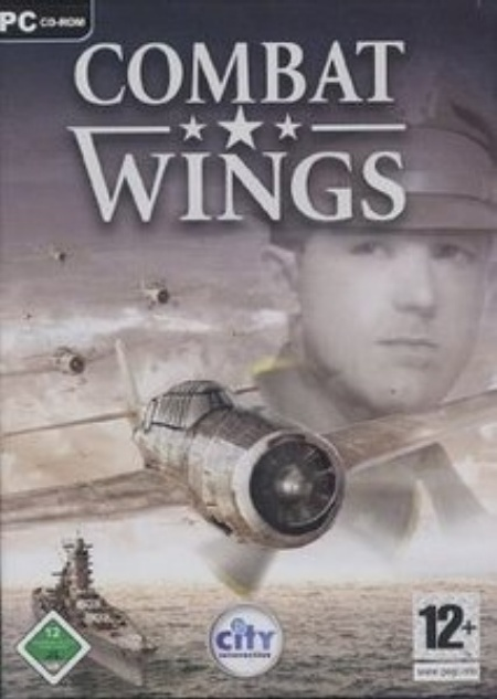 Combat Wings: Battle of the Pacific Combat10