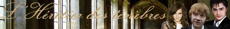 13 - L'heritier des tenebres 468-6011