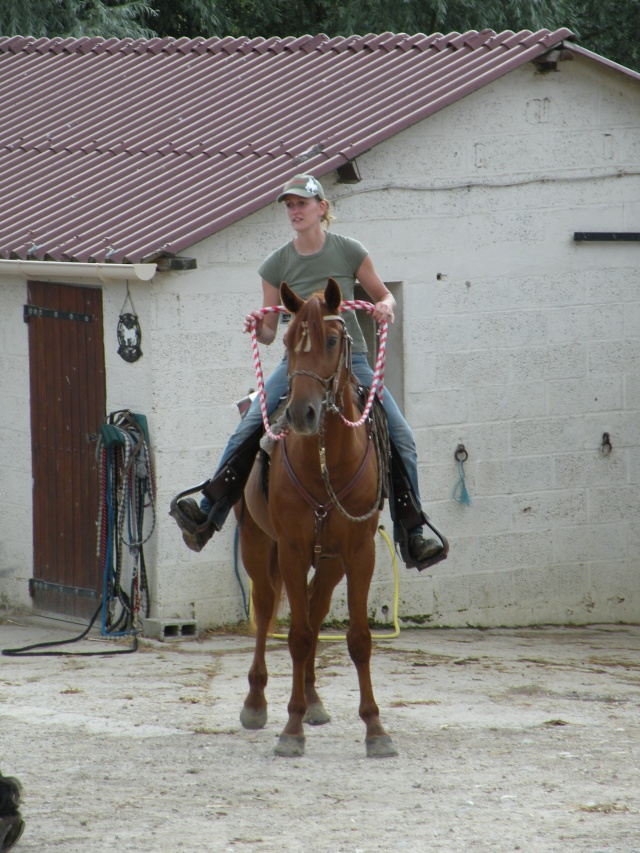 Une photo de vous et votre cheval - Page 3 Dscn0610