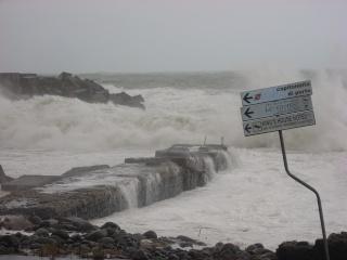 I danni provocati dal maltempo in Sicilia Dscn2413