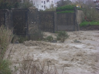 I danni provocati dal maltempo in Sicilia Dscn2523