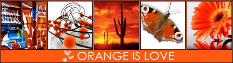 Излавки Orange10