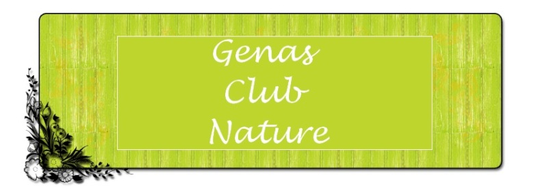 Club CPN Genas