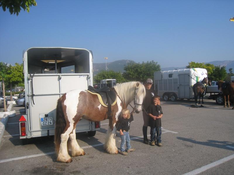 Une ballade énorme avec au moins 200 chevaux sur  Ajaccio Rando_43
