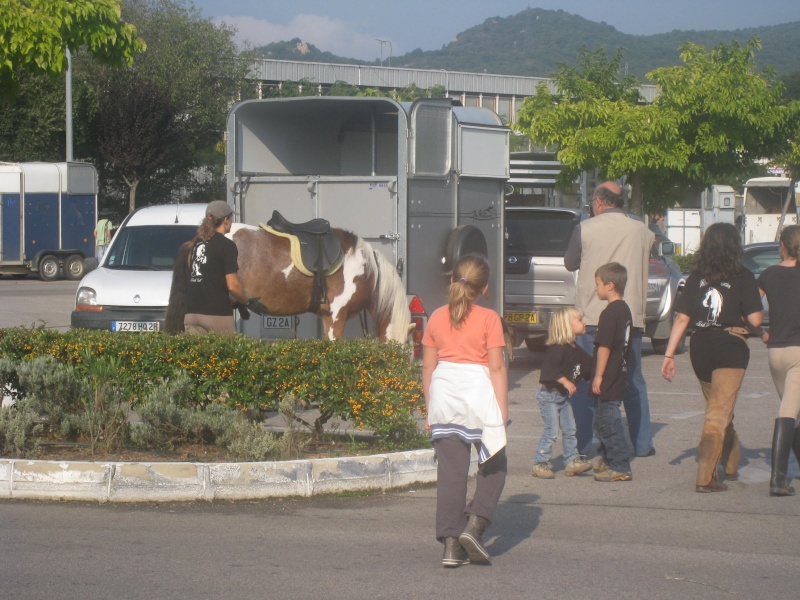 Une ballade énorme avec au moins 200 chevaux sur  Ajaccio Rando_44
