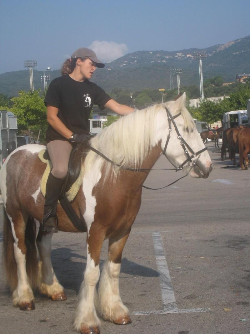 Une ballade énorme avec au moins 200 chevaux sur  Ajaccio Rando_46