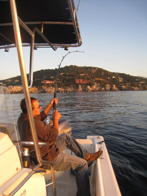 Juste pour vous donner envie de venir en Corse Romer_91