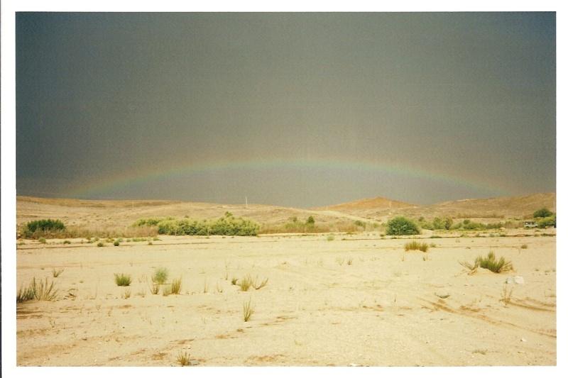 inondations au sahara 510