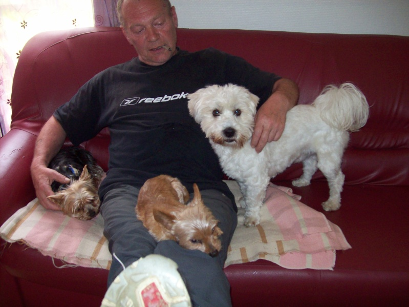 voila mes chiens - Page 2 100_2210