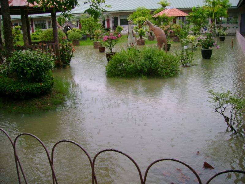 Gambar banjir di SMC -27feb08 Dsc03611