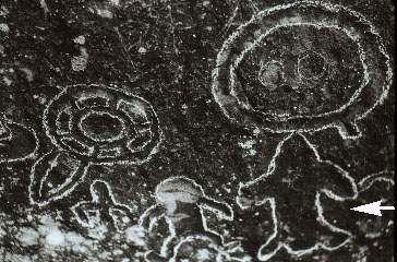 Représentations préhistoriques supposés d'aliens et d'OVNI Ufo1010