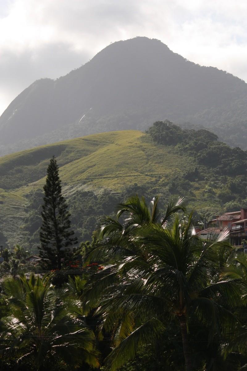 Retour du Brésil 97210