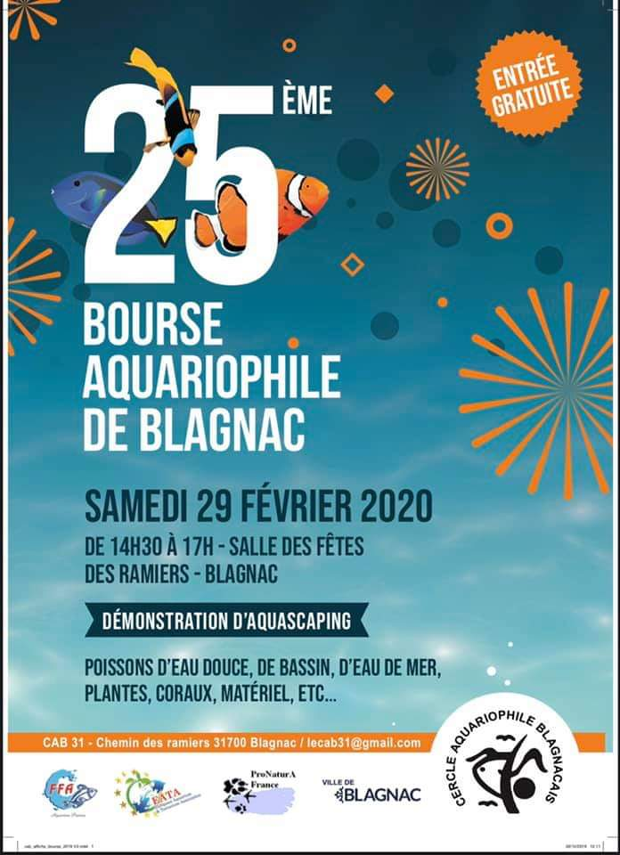 Bourse Blagnac samedi prochain  82701510