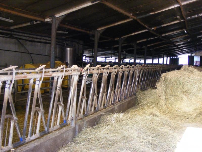 Exploitation laitière Savoie (73) Dscf0622