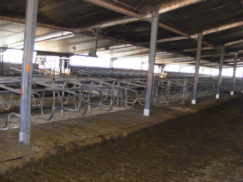 Exploitation laitière Savoie (73) Dscf0623