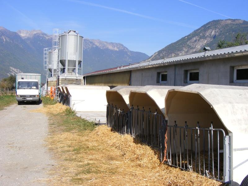 Exploitation laitière Savoie (73) Dscf0626